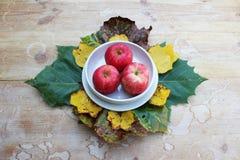 Белая плита с кусками яблока стоковое изображение
