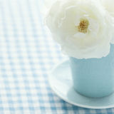 Белая роза в свете - голубая ваза Стоковые Изображения