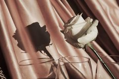 Белая роза и тень в винтажных оттенках, влюбленности и романтизме Стоковая Фотография RF