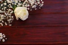 Белая роза на деревянной предпосылке Стоковое Изображение RF