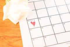белая роза на календаре с датой 14-ое февраля Valentin Стоковая Фотография RF