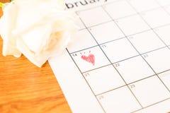 белая роза на календаре с датой 14-ое февраля Valentin Стоковые Фото