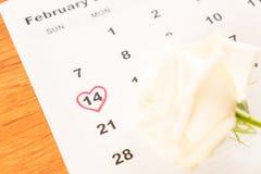 белая роза на календаре с датой 14-ое февраля Valentin Стоковые Изображения RF