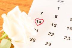 белая роза на календаре с датой 14-ое февраля Valentin Стоковое Изображение