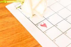 белая роза на календаре с датой 14-ое февраля Valentin Стоковые Фотографии RF