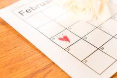 белая роза на календаре с датой 14-ое февраля Valentin Стоковое фото RF