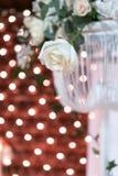 Белая роза на предпосылке световых эффектов стоковая фотография rf