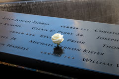Белая роза дня рождения около имени жертвы выгравированной на бронзовом парапете 9/11 мемориалов на всемирном торговом центре - Н Стоковые Фотографии RF