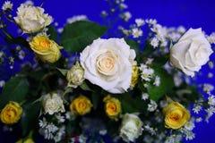 Белая роза для украшает партию Стоковая Фотография RF