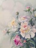 Белая розовая акварель группы пионов Стоковые Фото