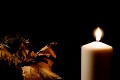 Белая свеча с сухие листья Стоковые Фото