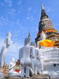 Белая старая статуя Будды с предпосылкой голубого неба на виске Wat Yai Chai Mongkhon старом Стоковые Фотографии RF