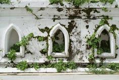 Белая старая стена Стоковые Изображения