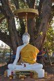 Белая статуя Будды на виске Бангкоке Таиланде Wat Phra Sri красивом Стоковые Изображения