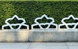 Белая стена загородки и зеленого растения Стоковые Фото