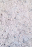 Белая стена с серыми тенями Стоковое Изображение