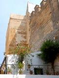 Белая стена с цветками и стена красят rmattone Стоковые Фото