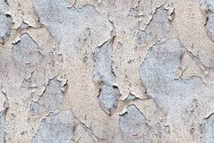 Белая стена - текстура grunge Стоковая Фотография RF