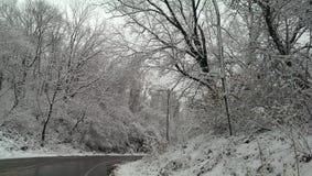 Белая страна чудес зимы в морозной Пенсильвании Стоковые Изображения RF