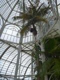 Белая структура ботанического сада в парке в Curitiba стоковое фото rf