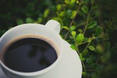 Белая чашка горячего кофе на предпосылке природы зеленого цвета завода Sh Стоковые Фотографии RF
