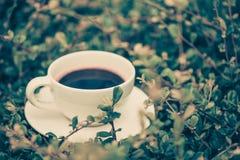 Белая чашка горячего кофе на предпосылке природы зеленого цвета завода Sh Стоковая Фотография RF