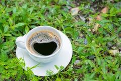 Белая чашка горячего кофе на предпосылке природы зеленого цвета завода Sh Стоковая Фотография