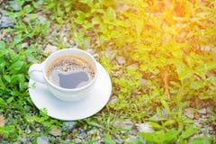 Белая чашка горячего кофе на предпосылке природы зеленого цвета завода Sh Стоковое Фото