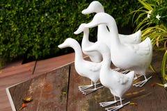 Белая штукатурка утки украшает на деревянном поле Стоковое фото RF