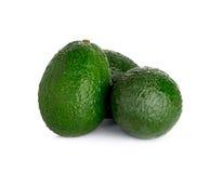 белизна авокадоа изолированная предпосылкой Стоковая Фотография RF