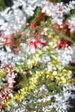 белизна ангела изолированная рождеством Стоковые Изображения