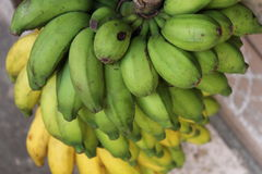 белизна банана предпосылки изолированная пуком Стоковые Фото