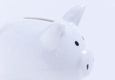 белизна банка piggy Стоковые Фотографии RF
