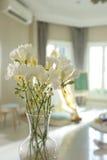 белизна вазы цветков Стоковое Изображение