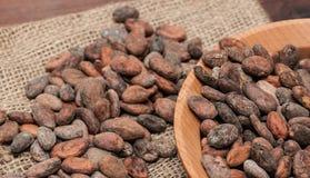 белизна вектора иллюстрации какао фасолей предпосылки Стоковая Фотография