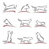 белизна вектора иллюстрации конструкции кота предпосылки установленная вектор Стоковые Фотографии RF