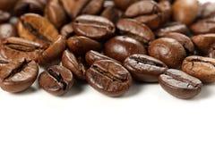 белизна вектора кофе фасолей предпосылки зажаренная в духовке иллюстрацией Стоковое Изображение