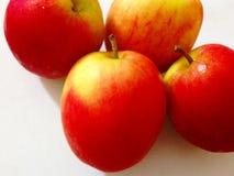белизна вектора яблока изолированная иллюстрацией красная Стоковое Изображение RF