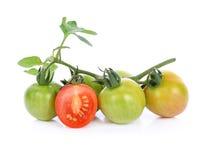 белизна взгляда сверху томатов предпосылки зрелая Стоковое Изображение