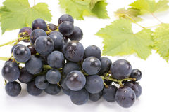 белизна виноградины пука предпосылки изолированная Стоковое Фото