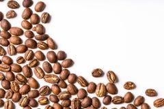 белизна вида спереди фокуса кофе крупного плана фасолей фасоли Стоковая Фотография RF