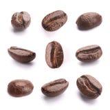 белизна вида спереди фокуса кофе крупного плана фасолей фасоли Стоковое Фото