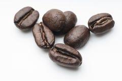 белизна вида спереди фокуса кофе крупного плана фасолей фасоли сфокусируйте мягко Стоковое Изображение