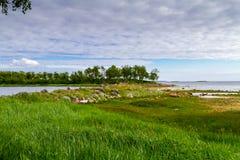 белизна волны морской воды песка свободного полета Стоковая Фотография