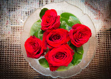 белизна воды вазы роз картины цвета предпосылки Стоковое Изображение RF