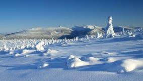 Белизна в гигантских горах/Karkonosze Стоковые Изображения