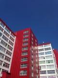 белизна голубого красного цвета Стоковые Изображения RF