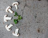 белизна гриба еды предпосылки Стоковые Изображения RF