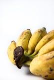 белизна еды банана предпосылки вегетарианская Стоковая Фотография RF