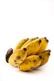 белизна еды банана предпосылки вегетарианская Стоковое Изображение